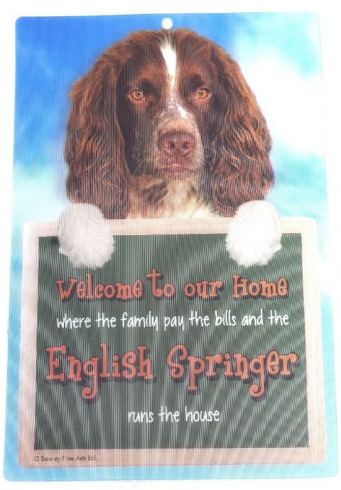 ENGLISH SPRINGER SPANIEL 3D WELCOME SIGN STUNNING EYE CATCHING 23CM X 15CM SIGN